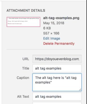 wordpress alt tag